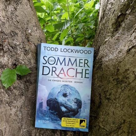 """Cover """"Der Sommerdrache"""""""
